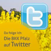 Zugang zum BKK Pfalz Twitter Account