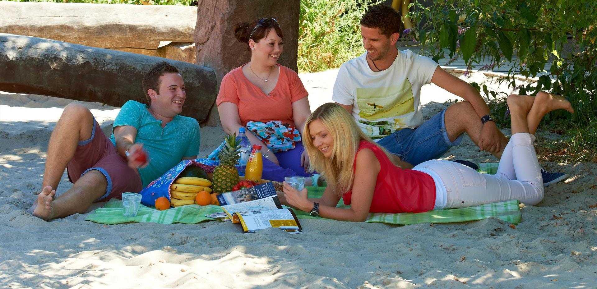 Zwei junge Männer, zwei junge Frauen beim Picknick im Sand